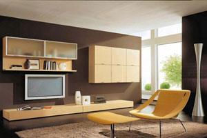 Мебель для гостиной - 9