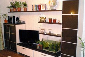 Мебель для гостиной - 40