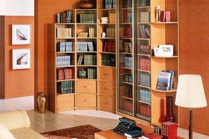 Мебель для библиотеки - 17