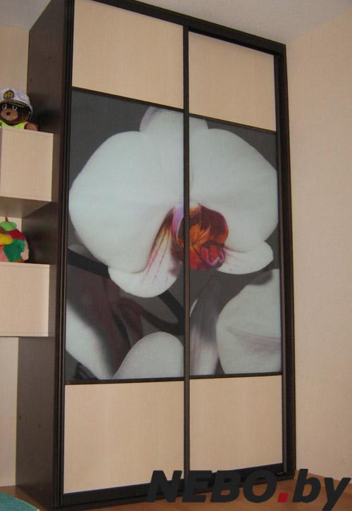 Шкаф-купе с рисунком на стекле, зеркале, с пескоструйным рис.