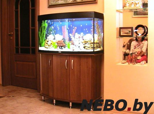 Тумбочка под аквариум фото
