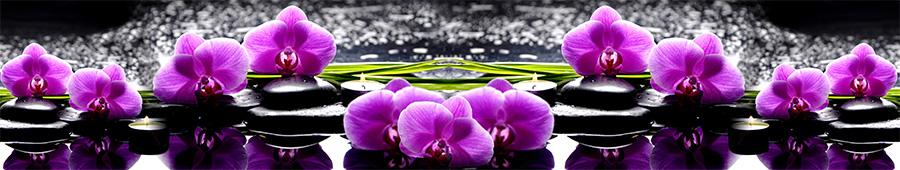 Скинали - Ярко-фиолетовые орхидеи на черных камнях
