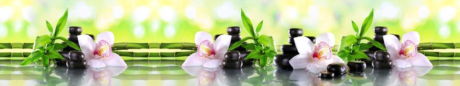 Скинали - Нежная орхидея в камнях и бамбуке
