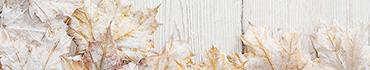 Скинали - Замерзшие листочки