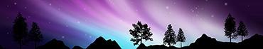 Скинали - Северное сияние на фоне гор и деревьев