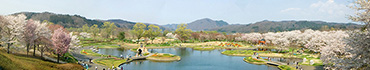 Скинали - Городской парк в Японии