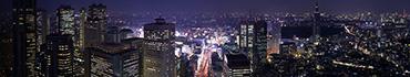 Скинали - Ночной Токио