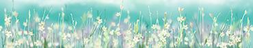 Скинали - Цветочное поле с размытым фоном