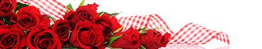 Скинали - Неподражаемые красные розы с лентой
