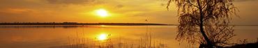 Скинали - Рассвет на озере