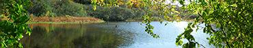 Скинали - Белорусские озера