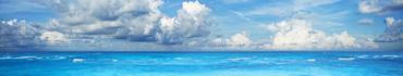 Скинали - Океан яркими красками