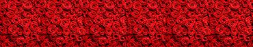 Скинали - Коллаж из бутонов красных роз