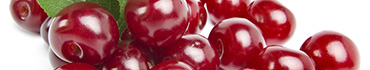 Скинали - Бордовая черешня