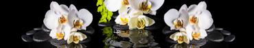 Скинали - Спа натюрморт, белые орхидеи на черных камнях дзен