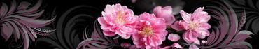 Скинали - Цветы вишни в узорах на черном фоне