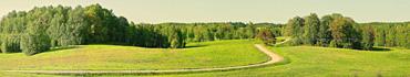 Скинали - Пейзаж с проселочной дорогой