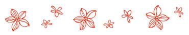 Скинали - Темно-оранжевые контурные цветочки на белом фоне