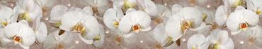 Скинали - Белые орхидеи с жемчужинами на коричневом фоне