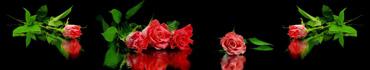 Скинали - Коралловые розы на черном фоне