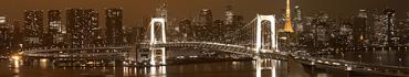 Скинали - Ночной вид на Радужный мост в Токио