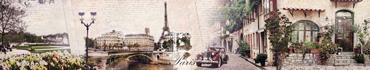 Скинали - Цветочно-винтажный Париж
