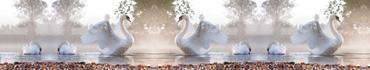 Скинали - Прекрасные лебеди на озере
