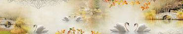 Скинали - Осенний фон с лебедями в саду с каменным мостом