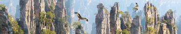 Скинали - Орлы летают в солнечный день