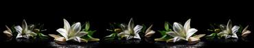 Скинали - Лилии на черном фоне