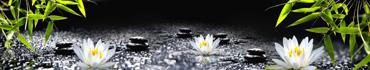 Скинали - Цветки белого лотоса на фоне с бамбуком