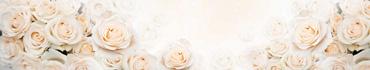 Скинали - Нежные розы