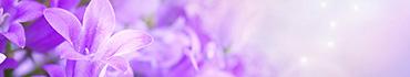 Скинали - Цветок сирени