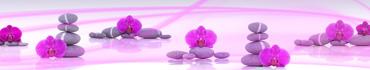 Скинали - Орхидеи с камнями дзен