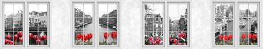 Скинали - Вид из окна на черно-белый Амстердам с красными тюльпанами