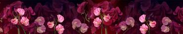 Скинали - Розовые цветы на темном фоне
