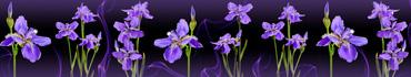 Скинали - Фиолетовые ирисы