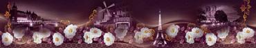 Скинали - Ночной Париж в белых розах