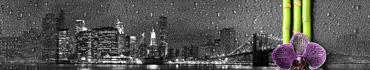 Скинали - Капли на стекле с изображением ночного Нью-Йорка с орхидеей