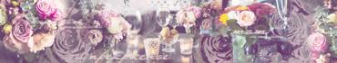 Скинали - Цитата Кафки на фоне с букетами в вазах