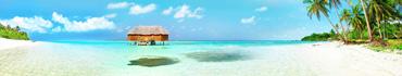 Скинали - Тропический пляж ярким днем
