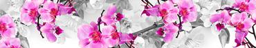 Скинали - Яркие розовые орхидеи на фоне черно-белых цветущих веток