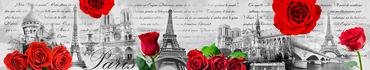 Скинали - Черно-белый фон Парижа с красными розами