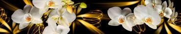 Скинали - Белые орхидеи на абстрактном фоне
