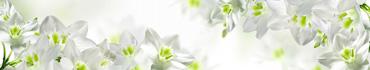 Скинали - Белые цветы