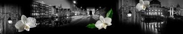 Скинали - Белые орхидеи, украшающие ночные города Европы