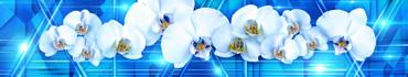 Скинали - Орхидеи на геометрическом фоне