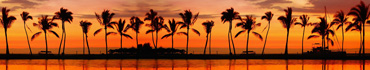 Скинали - Закат на тропическом пляже