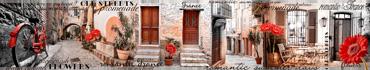 Скинали - Красные герберы на старых улочках Франции