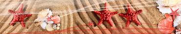 Скинали - Ракушки и морские звезды на песке
